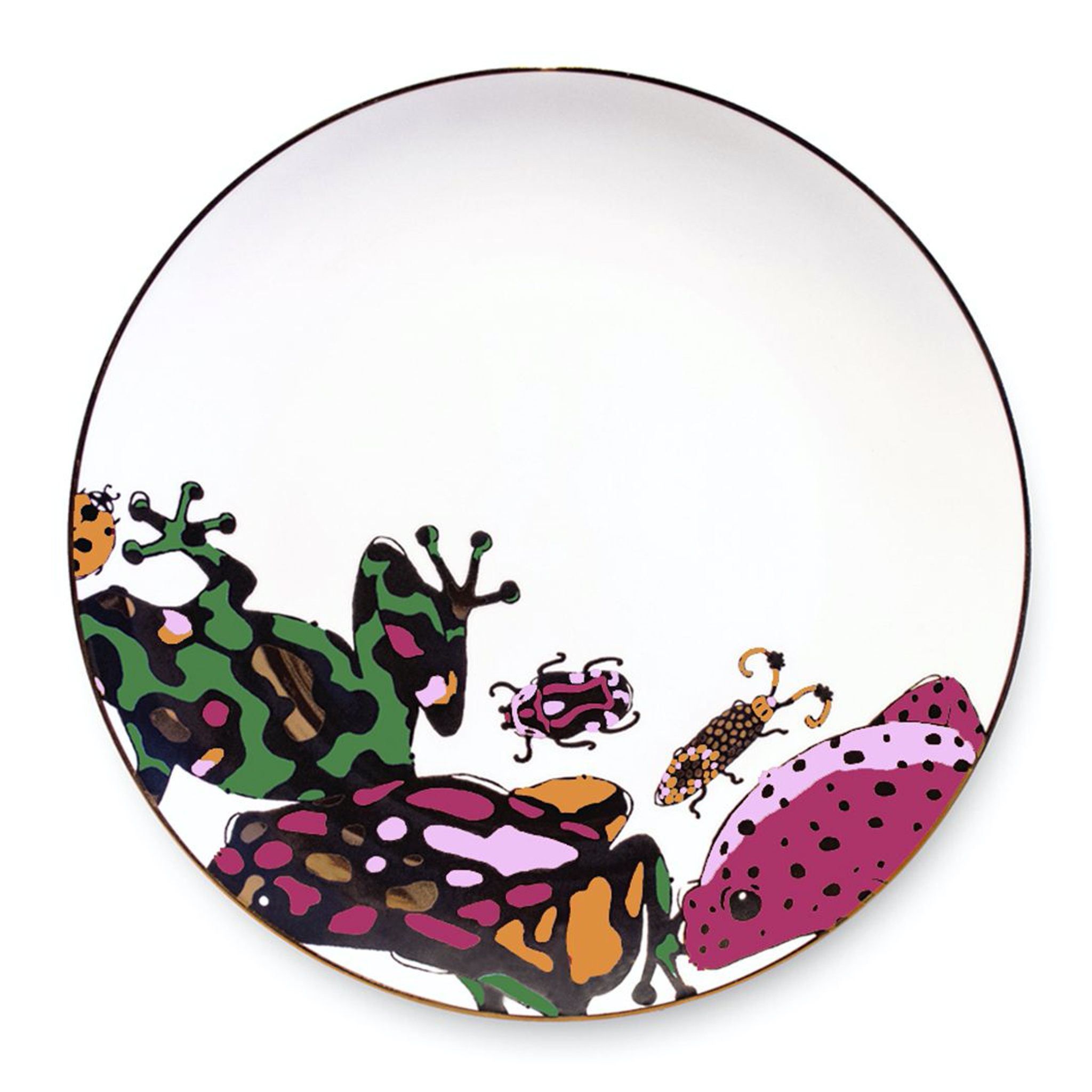 bold vibrant colourful playful frog print china plate aase hopstock